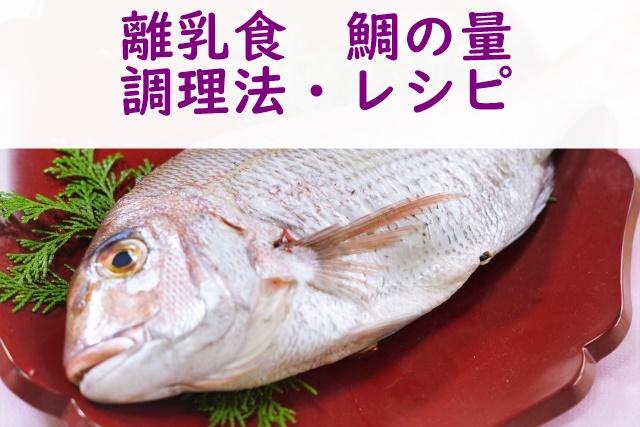離乳食 鯛
