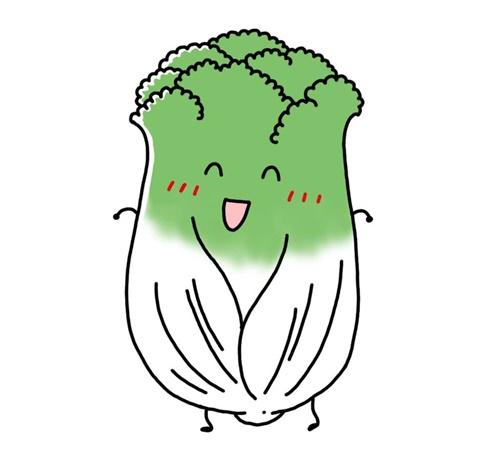 離乳食 白菜